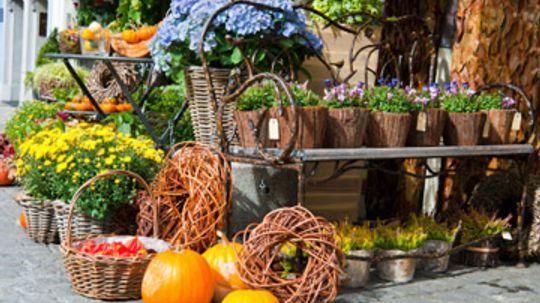 Can you start a garden in the summer?