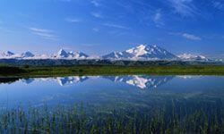 Denali National Park is one of Alaska's great natural wonders.