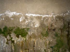 If your basement walls look like this, a sump pump might be a good idea.
