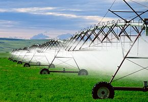 How much do you know about sustainable farming?