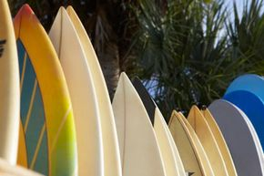 There is a wide variety of surfboards to choose from.