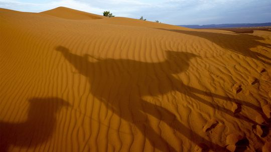 What Are the 5 Hottest Deserts on Earth?