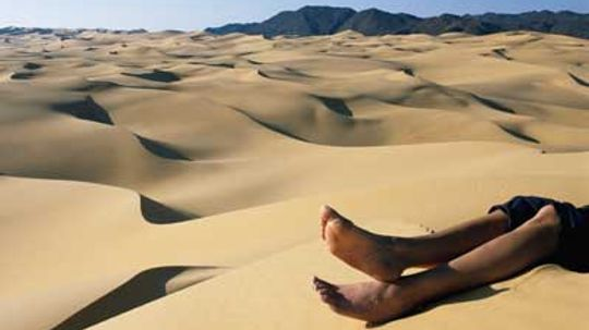 Are sand dunes really alive?