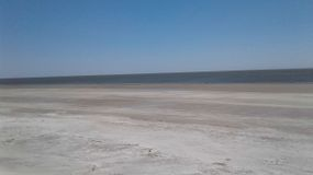 The beach at Sapelo Island.