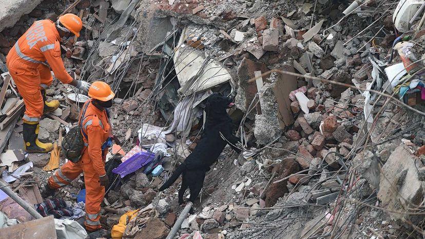 collapsed apartment building Mahad, India