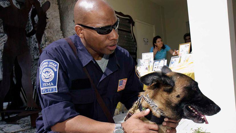 FEMA SAR dog and trainer