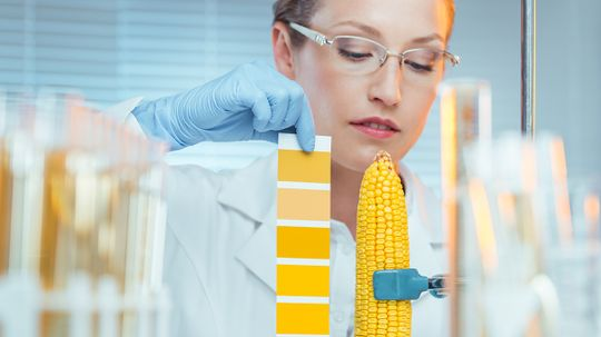 The FDA and America's Frightening Food System