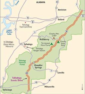 View Enlarged Image This map of Talladega Scenic Drive follows a path through the stunning vistas of Talladega National Forest.