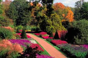 The Longwood Gardens provide delightful color to the Delaware Coast.
