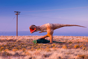At least this dinosaur -- stationed in Arizona on Route 66 -- isn't fooling anybody. See more fossil pictures.