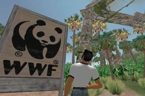 have virtual holdings in Second Life.