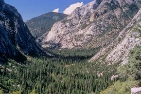 A view of a valley in Sequoia National Park. See more national park pictures.