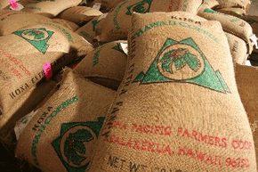 """The """"shade-grown"""" label on Kona coffee says a lot about coffee growing as a whole."""