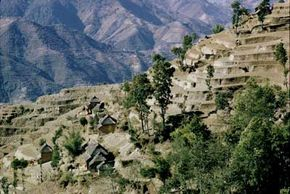 Sherpas carved out terraced fields on the mountain slopes for farming.