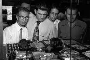 Were they real, the shrunken heads these New Yorkers view with curious interest in a shop window in the 1950s would have been worn by a Shuar warrior in a succession of celebrations before losing their spiritual significance.