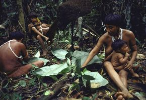 Not everyone hates termites. In fact, some people -- like these members of the Yanomami tribe in the Amazon -- find them delicious when cooked in a banana leaf. See insect pictures.