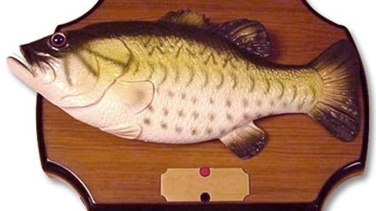 How Singing Fish Work