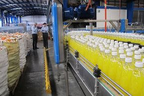 Pineapple sodas are produced in the Oaxaca factory of Gugar Soda.