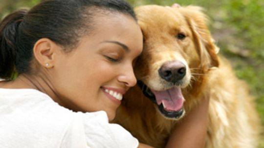 5 Skin Problems You Can Get From Your Pets