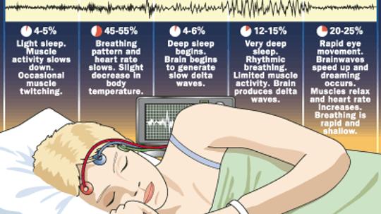 How Sleep Works