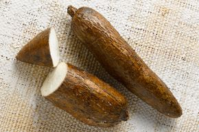 Cassava is known by many names, including manioc, yuca and arrowroot.