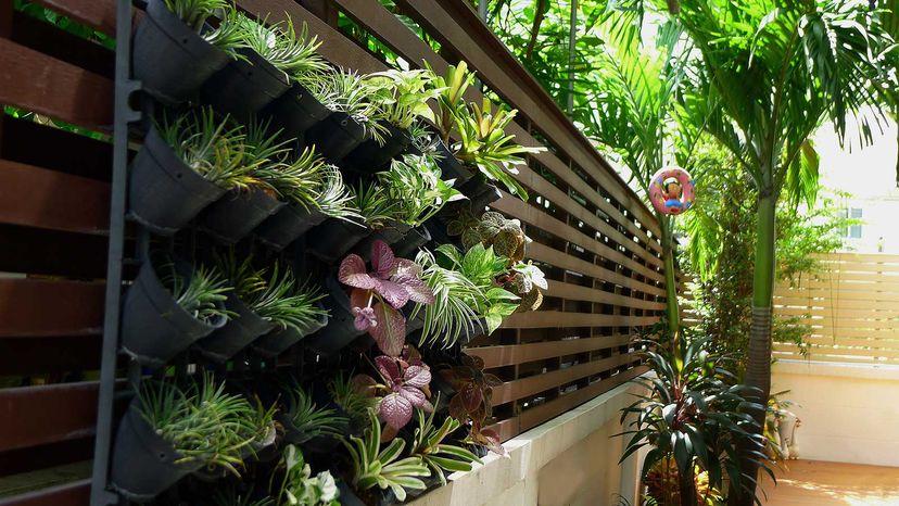 wall-mounted garden