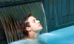 Make sure the waterfall fountain or water spouts for your spa pool are installed in a scenic, sheltered setting.
