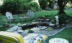 When it comes to building a miniature pond, it's all about location.