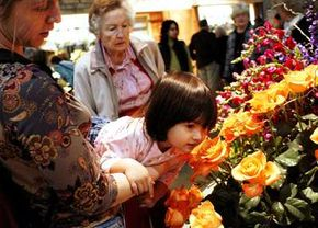 We make most of our olfactory memories as children.