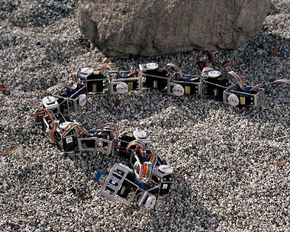 Snakebots will be able to move easily over extraterrestrial terrain.