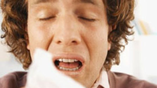 What are some pollen allergy symptoms?