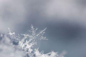 One snowflake can contain a quintillion molecules.