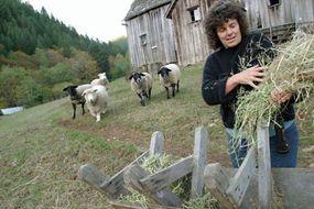 Linda, a former doctor, feeds sheep at Alpha Farm commune in Oregon.