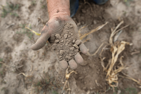 Is your farm suffering because of a drought? You should know that crop disaster payments are taxed as income.