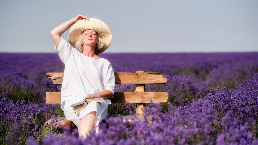 smelling lavender in field