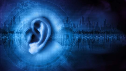 Scientists Discover Protein That Could Help Restore Hearing
