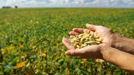 How can soy reduce energy use in my home?