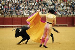 The bullfight, known also as the corrida, is one of Spain's oldest and most colorful traditions.