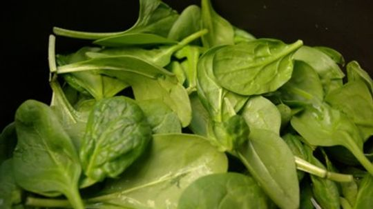 Spinach Questions