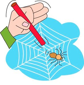 Touch the spiderweb gently with your straw.