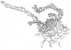 Drawing of Shelob, signed by the artists: $225.00