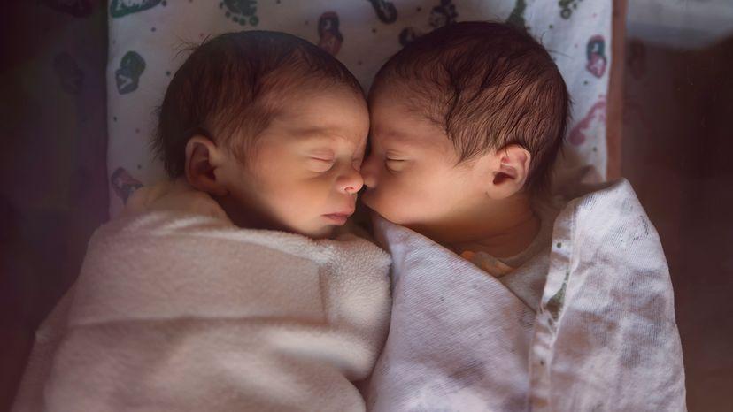 Male fraternal twin babies sleeping
