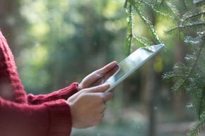 Go ahead. Read an e-book in the woods.