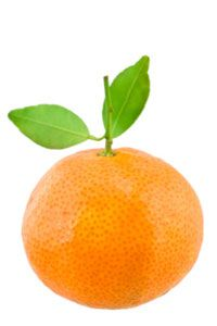 Tangerines can be easily peeled and pair well with poultry.