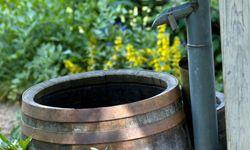 Rain barrels can be fun to make and fun to monitor.