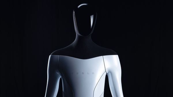 Is Elon Musk's New Tesla Bot the Stuff of Sci-fi Nightmares?