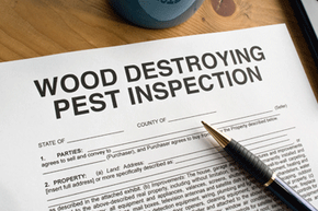 Make sure any paperwork you sign specifies termite treatment is the seller's concern.