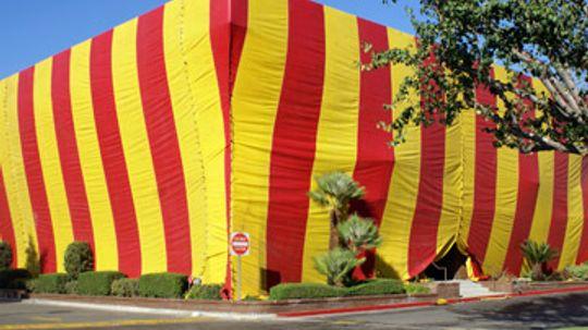 Home Buyers Beware: Termite Inspection