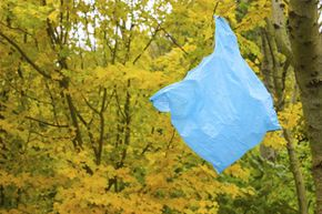 Discarded plastic bags aren't normally recycled. But they can be reused.