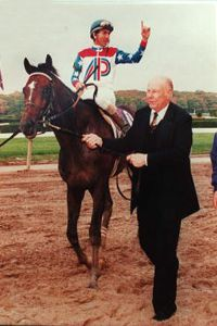 Thoroughbred horse Cigar raced as a 5-year-old and won more prize money than any other horse in history. He is shown here after winning the 1995 Breeders Cup at La Jolla, Calif.